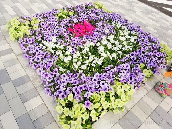 戸崎公園の花壇